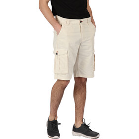 Regatta Shorebay Shorts Herren irish cream